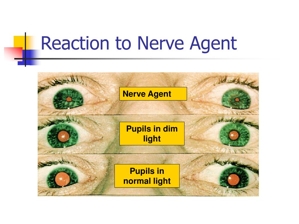 Reaction to Nerve Agent