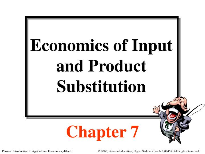economics of input and product substitution n.