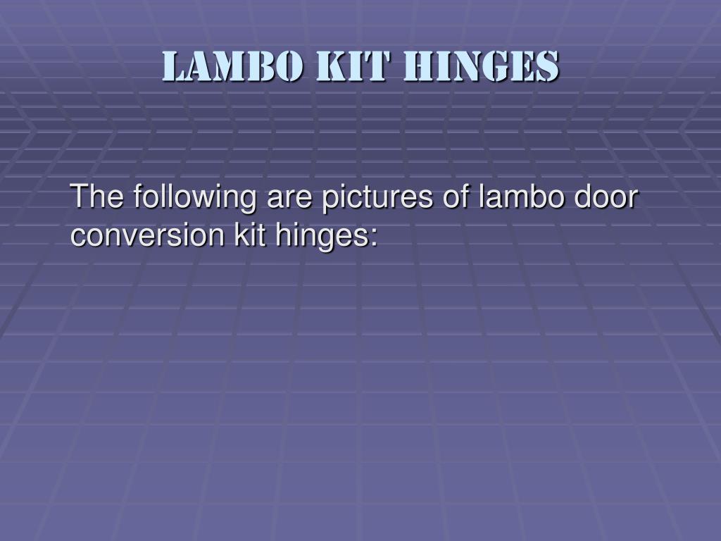 Lambo Kit Hinges
