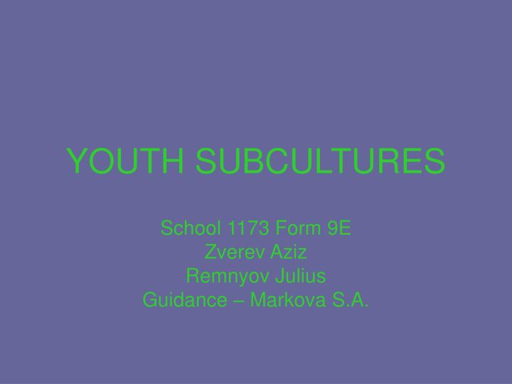 youth subcultures n.