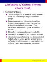 limitations of general systems theory cont