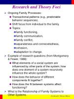 research and theory foci