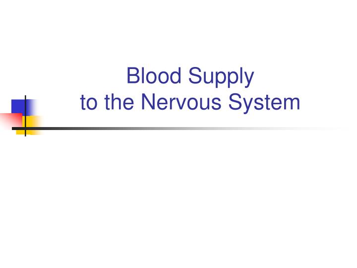 Blood supply to the nervous system