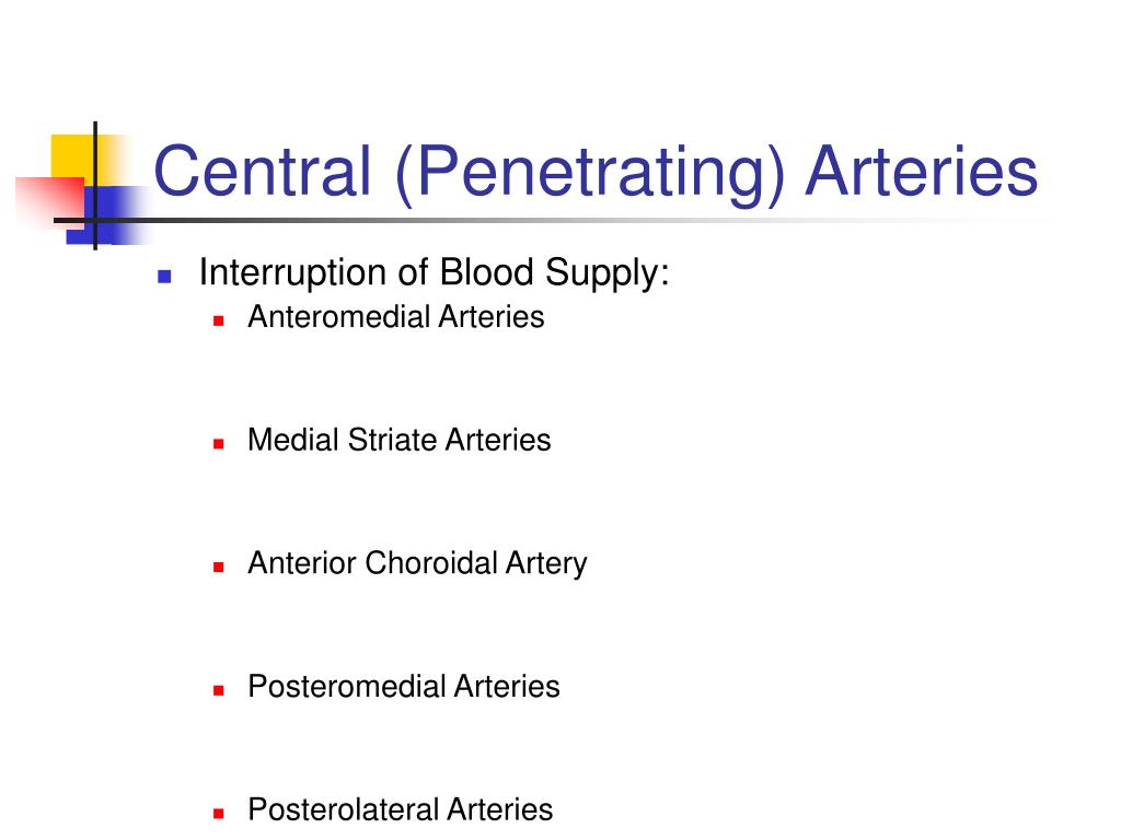 Central (Penetrating) Arteries