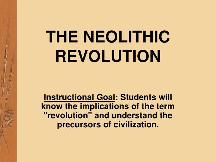the neolithic revolution n.