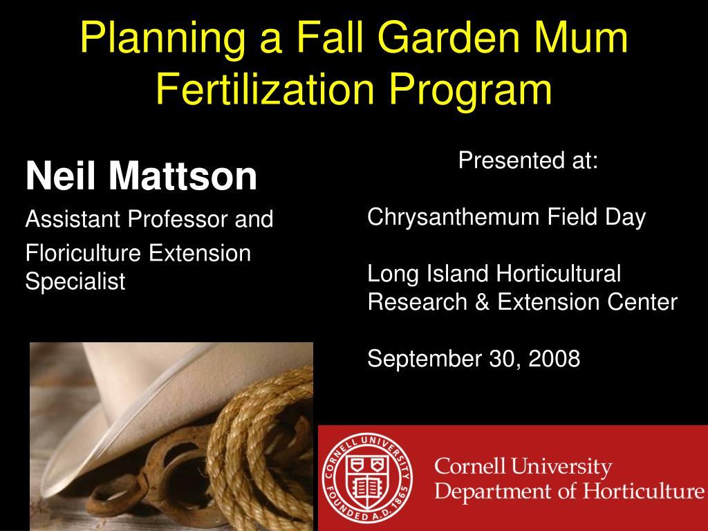 planning a fall garden mum fertilization program l.