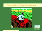 diversified crop production