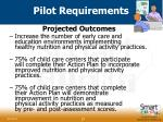 pilot requirements