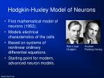 hodgkin huxley model of neurons