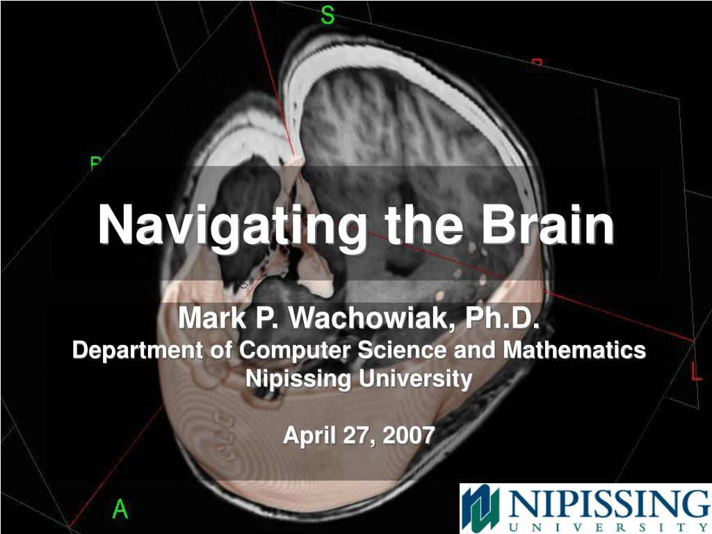 navigating the brain l.