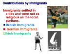 contributions by immigrants
