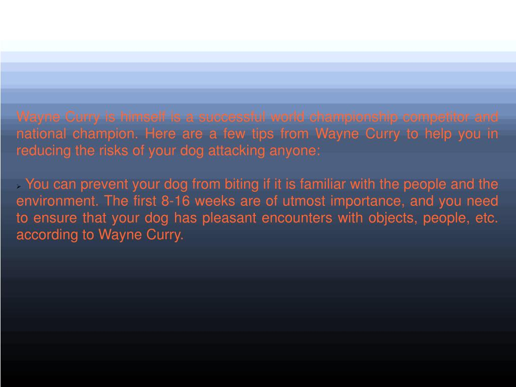 Wayne Curry is himself is a successful world championship competitor and national champion. Here are a few tips from Wayne Curry to help you in reducing the risks of your dog attacking anyone: