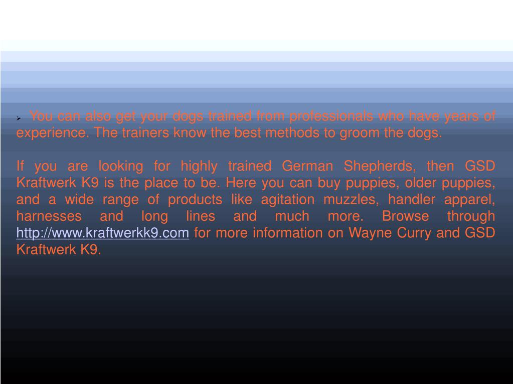You can also get your dogs trained from professionals who have years of experience. The trainers know the best methods to groom the dogs.