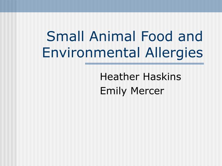small animal food and environmental allergies n.