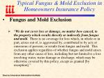 typical fungus mold exclusion in homeowners insurance policy