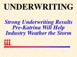 underwriting strong underwriting results pre katrina will help industry weather the storm