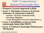 naic s comprehensive national catastrophe plan