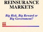 reinsurance markets big risk big reward or big government