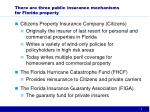 there are three public insurance mechanisms for florida property