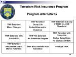 terrorism risk insurance program program alternatives
