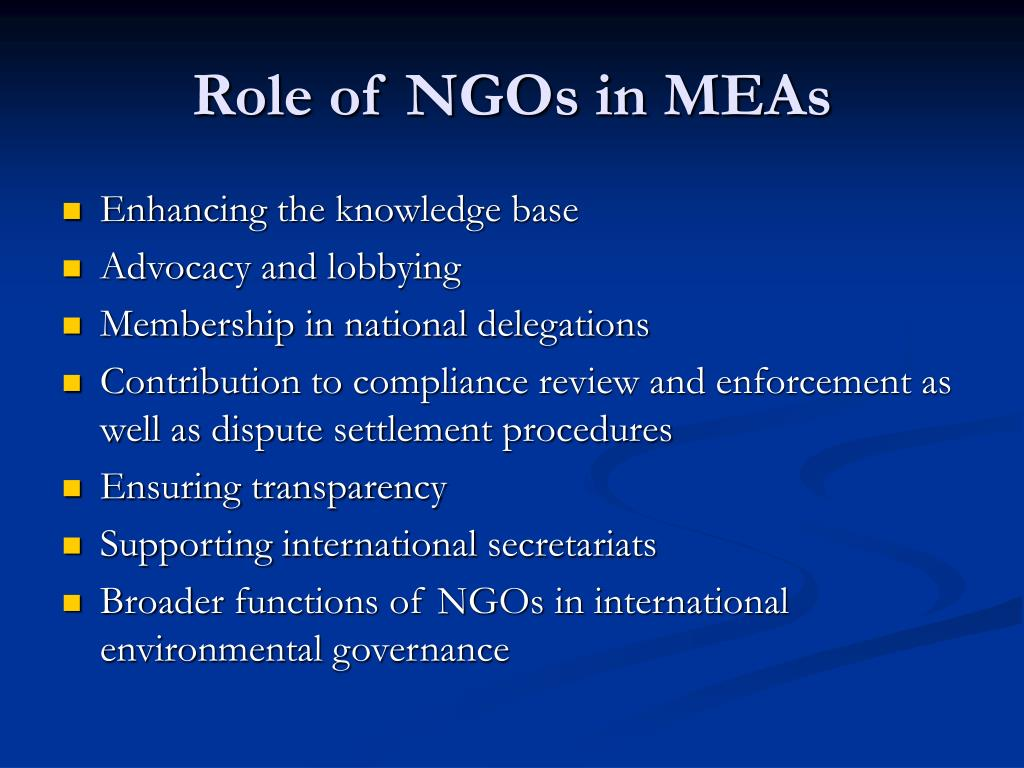 the role of an ngo in