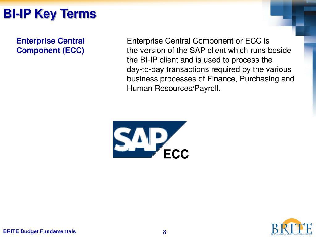 BI-IP Key Terms
