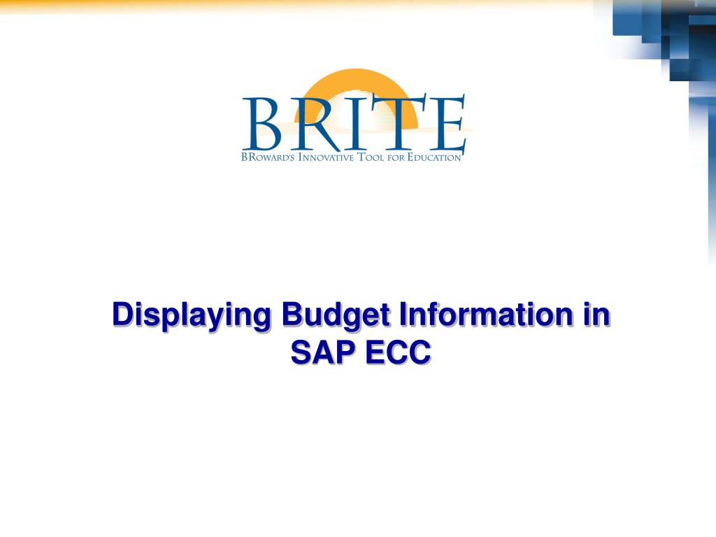 Displaying Budget Information in
