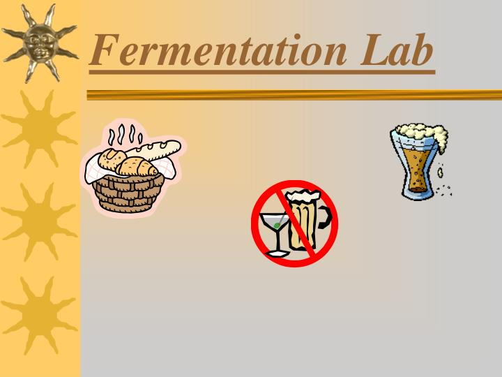 fermentation lab Fermentation lab filed under: essays tagged with: chemistry some possible mistakes in this lab would be incorrect water temperature or an incorrect amount of glucose solution.