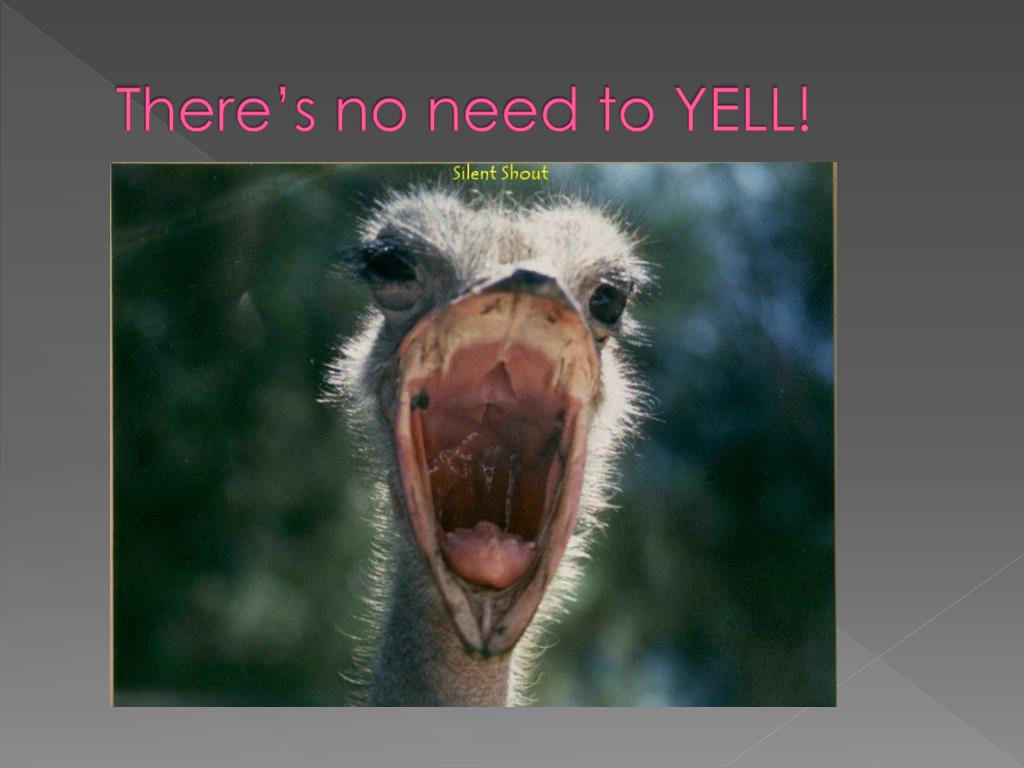 There's no need to YELL!