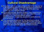 cultural disadvantage52
