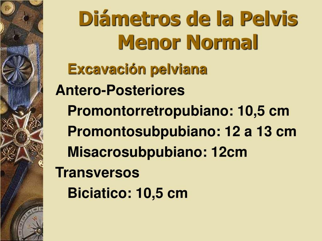 Diámetros de la Pelvis Menor Normal