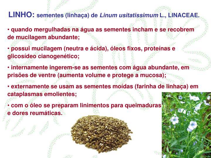 LINHO: