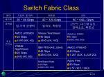 switch fabric class