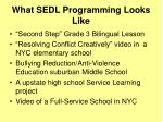 what sedl programming looks like
