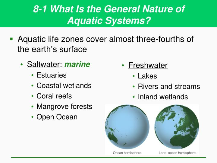 8 1 what is the general nature of aquatic systems1
