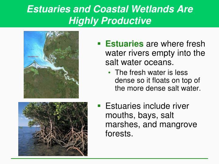 Estuaries and Coastal Wetlands Are