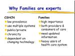 why families are experts