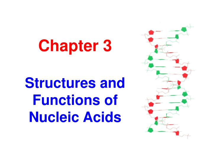 chapter 3 structures and functions of nucleic acids n.