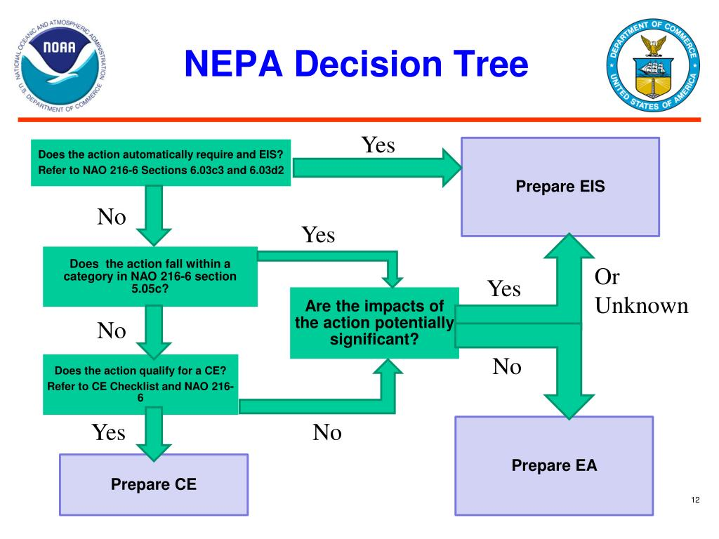 NEPA Decision Tree