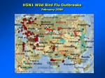 h5n1 wild bird flu outbreaks february 2006