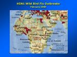 h5n1 wild bird flu outbreaks february 20061