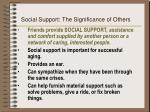 social support the significance of others