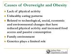 causes of overweight and obesity