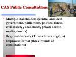 cas public consultations