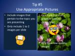 tip 5 use appropriate pictures