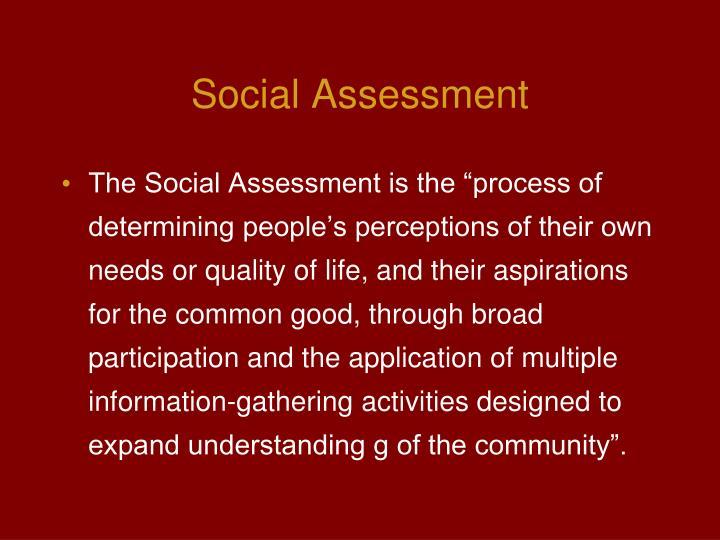 Social Assessment