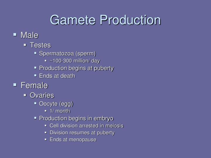 Gamete Production