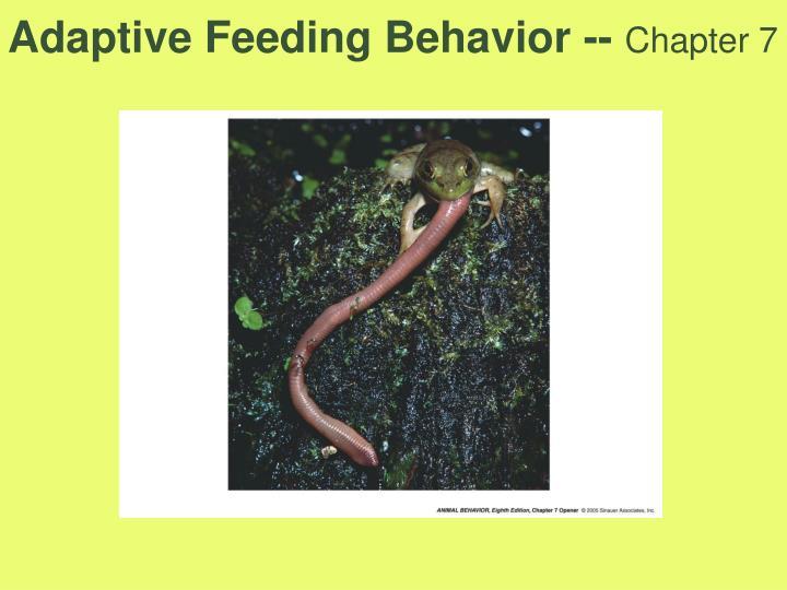 Adaptive feeding behavior chapter 7