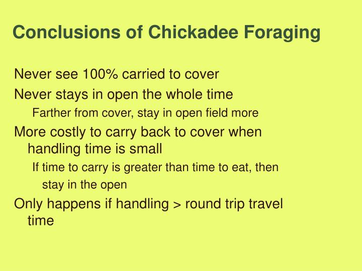 Conclusions of Chickadee Foraging