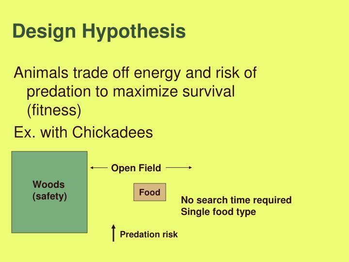 Design Hypothesis